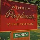 Sat May 26th Pugliese Vineyards 1-5pm